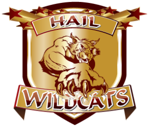 HAIL-WILDCATS_GOLD Logo