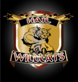hailwildcat logo