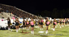 BCU vs South Carolina 2015 (63)
