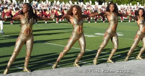 BCU vs Norfolk State 2015 (360)
